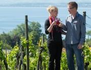 Der Wein des Reblandhofs wächst an einem der schönsten Aussich