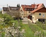 seekristall-meersburg-hof