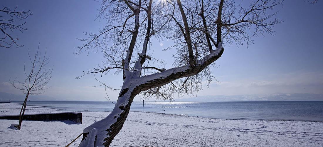 Hornstein am See Winterimpression