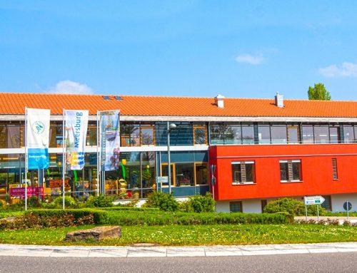 Winzerverein Meersburg